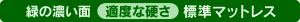 リバーシブル-緑の濃い面